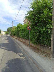 La végétalisation de la ville reste une priorité et un enjeu écologique majeur.